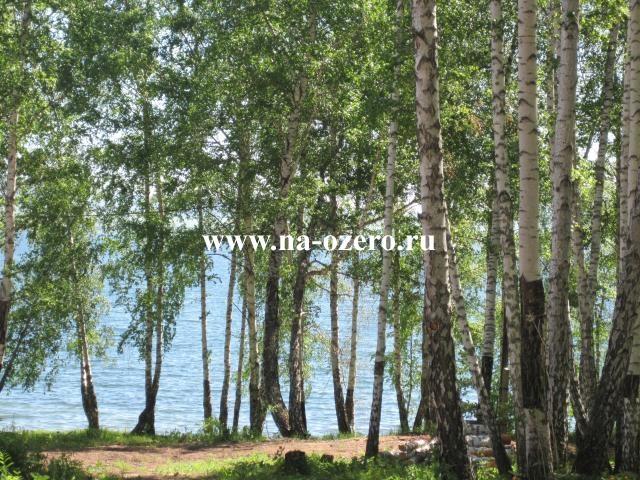 Дом на озере Парное №102